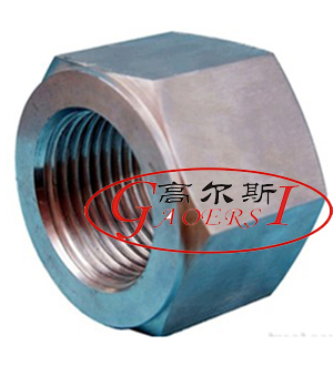 hex nuts, hexagonal nut