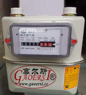 G4, IC gas meter, contatore del gas